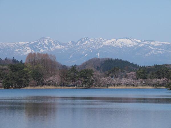 南湖の浅い春