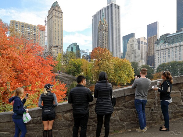 セントラルパークの秋