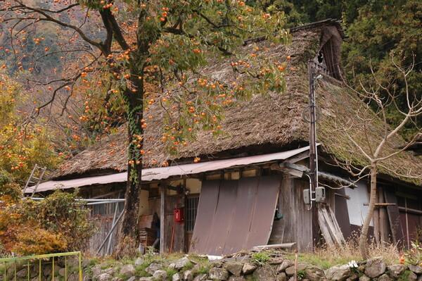 秋深まるくず屋根集落