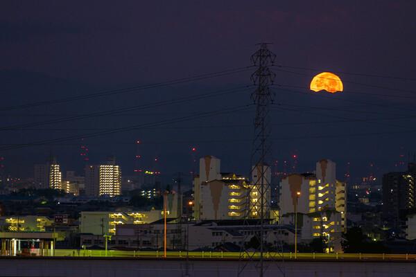 【だいだい】月
