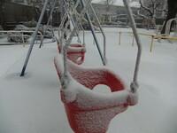 ケビ散歩(2月29日の雪)