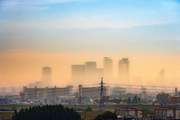 【彩】朝霧の朝