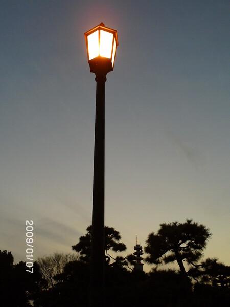 【トキメキの色】夕暮れの街灯