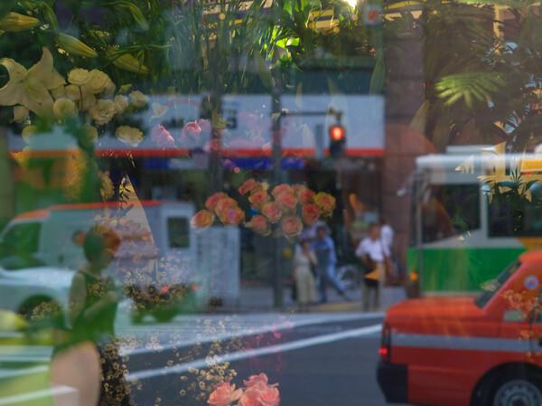 大都会の花屋さん