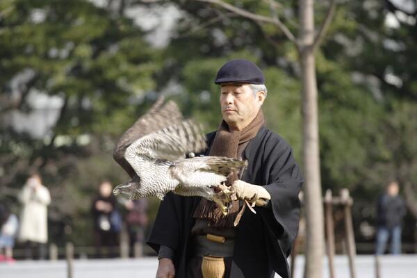 大鷹の発信