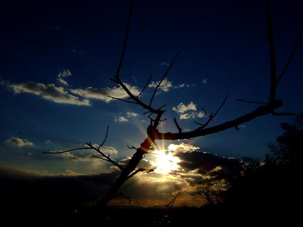 ある日の夕景