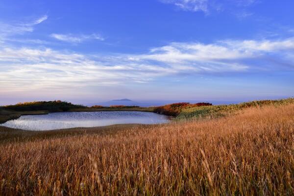 秋の月山弥陀ヶ原湿原