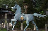 新馬と大楠