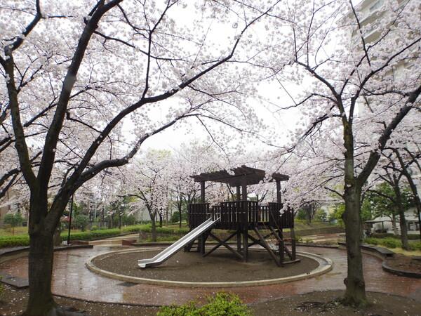 春雨の公園