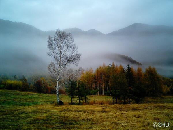 今朝の乗鞍高原