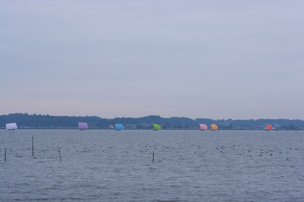 レインボーな帆引き船・・・