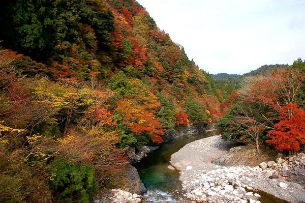 愛知川上流