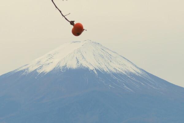 【秋】富士山2