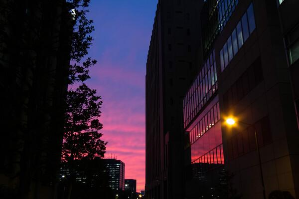 日比谷の夕焼け