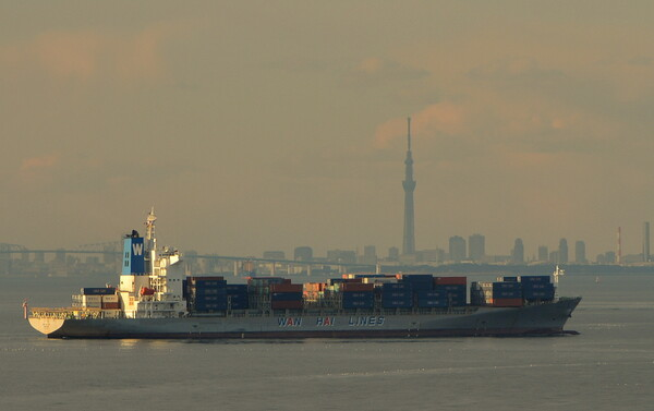 コンテナ船と東京スカイツリー