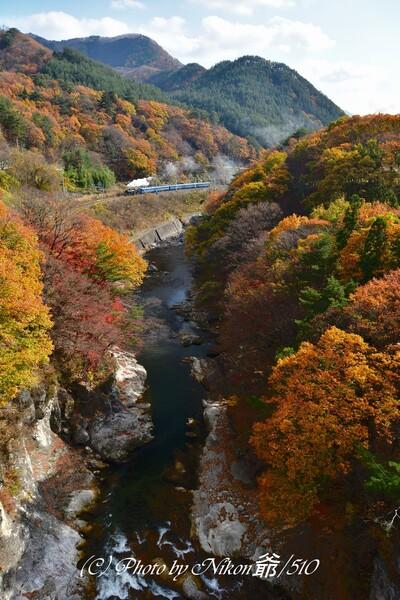 晩秋の諏訪峡