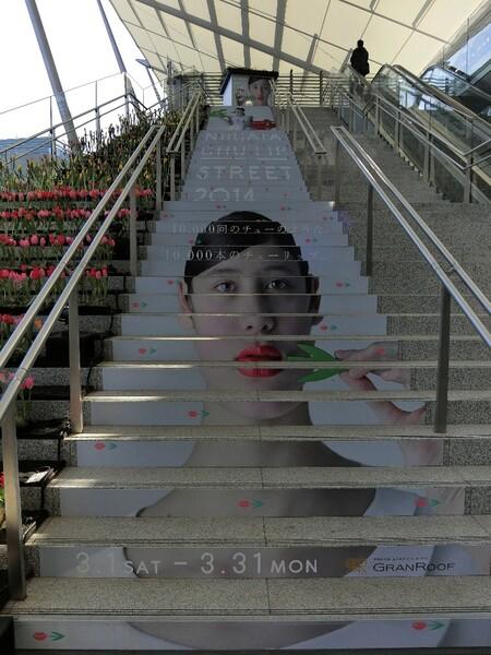 階段に残る女