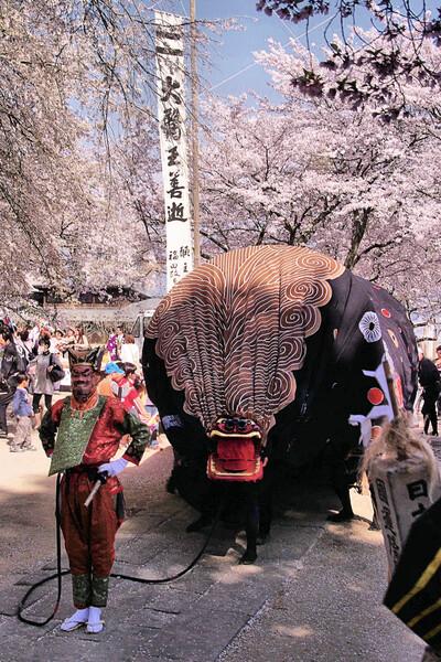 【桜】獅子舞