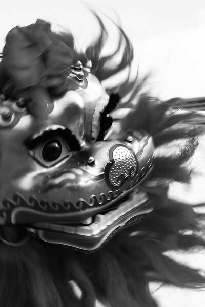 【M】獅子3