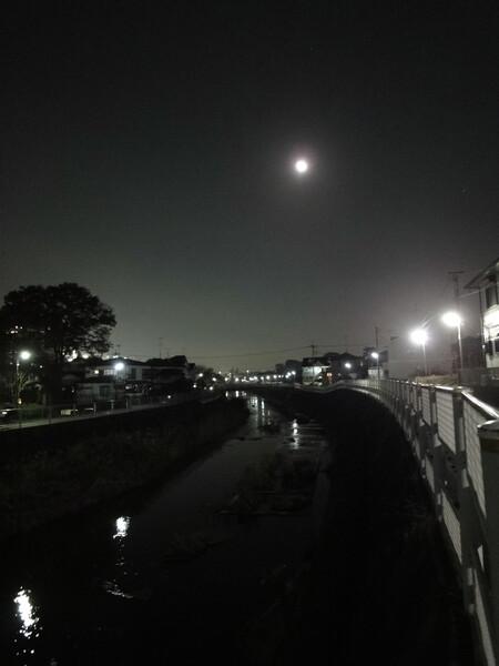 月夜の鶴見川