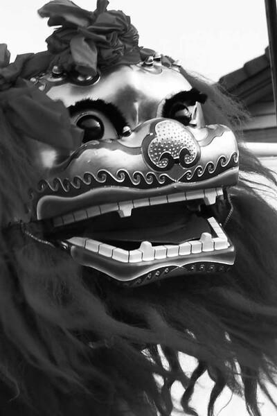 【M】獅子2