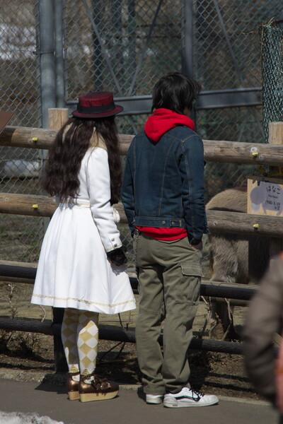 【はるの予感】動物園デート