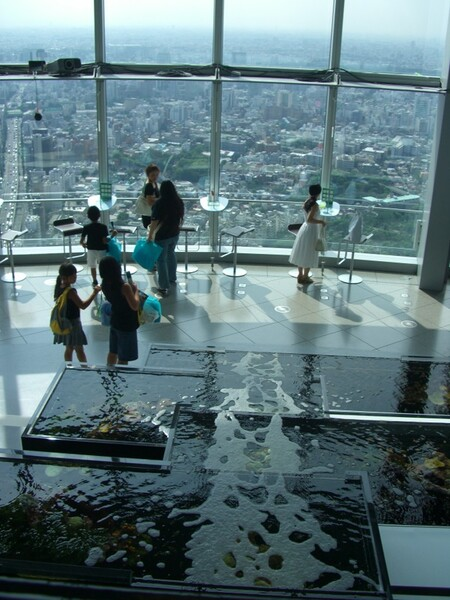 【流】展望台の水の流れ
