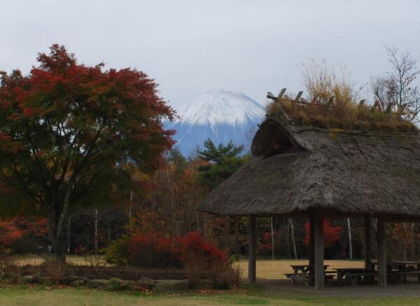 【秋】富士と藁葺き屋根