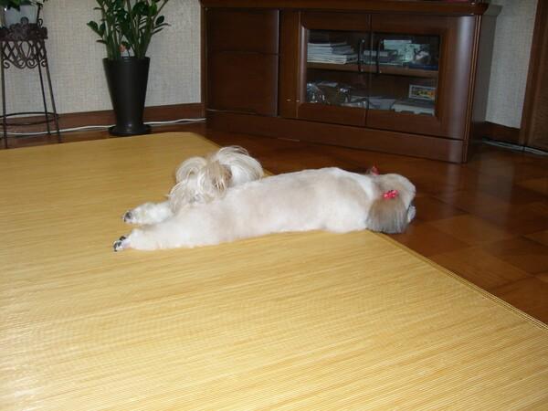 疲れた〜!!