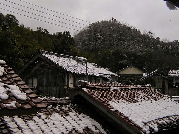 雪もダイブ止んできた!