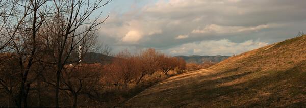 淀の堤防から京都のお山