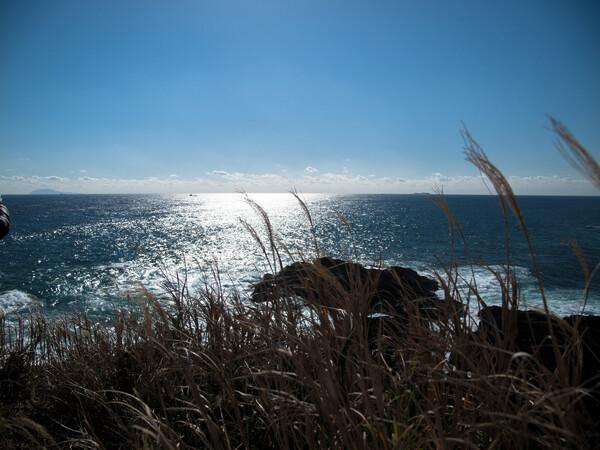 【風を感じて】風は海から