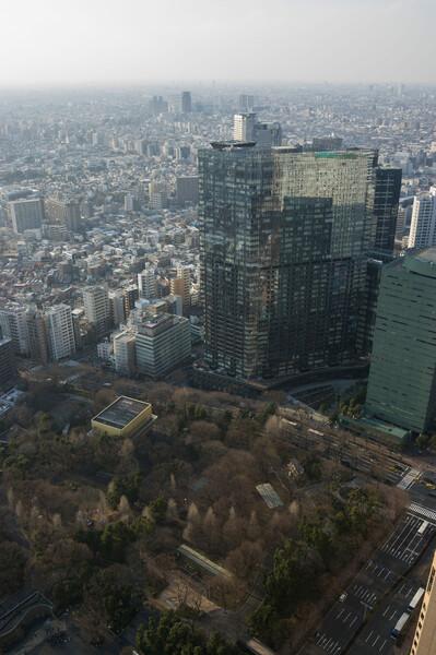 都庁から見る新宿中央公園