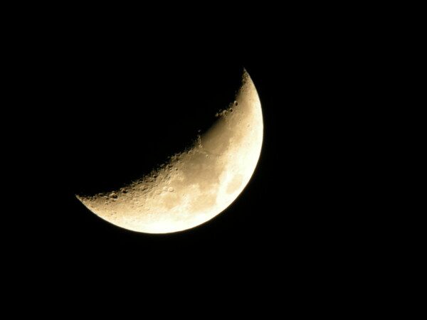 月並みですが…