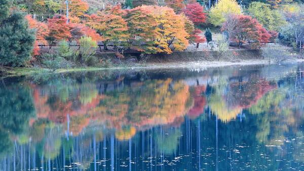 ダム湖の紅葉 Ⅱ