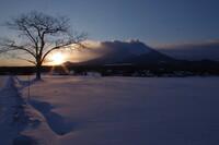 【夕日】 岩手山と一本胡桃