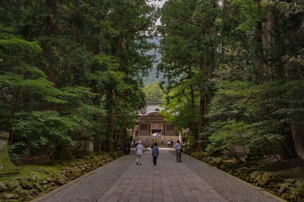 【寺社百景】参道