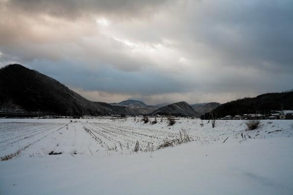 美しい雪景色に・・。