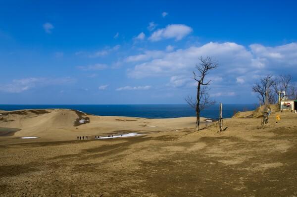 砂丘と日本海!
