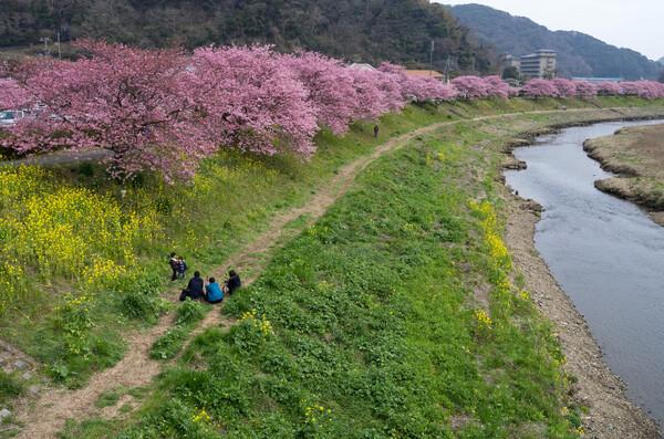 春の撮影会