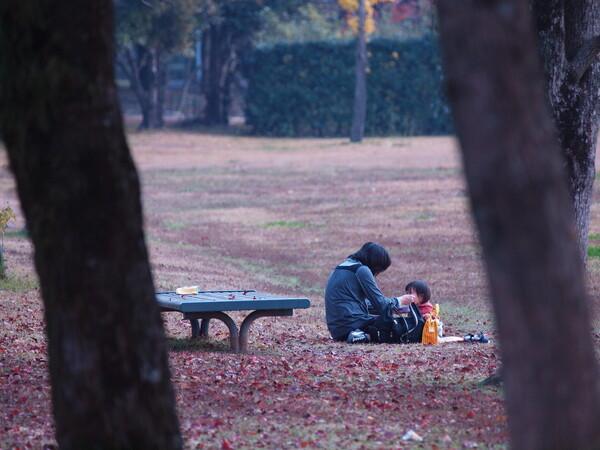 【秋】落葉の上で