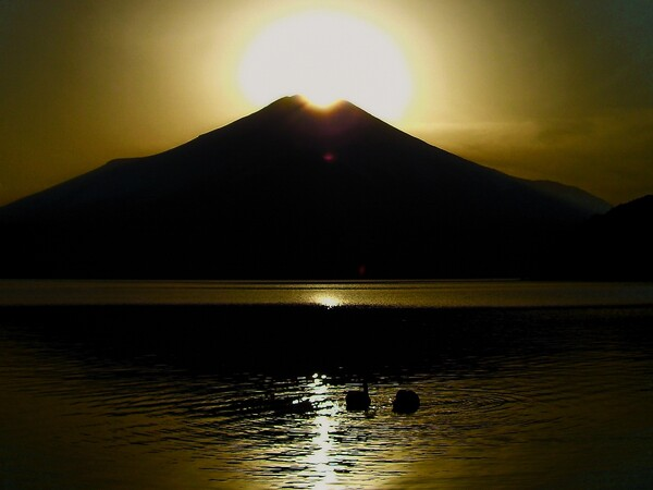 ダイヤモンド富士 湖面には白鳥