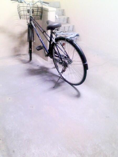 夜の自転車