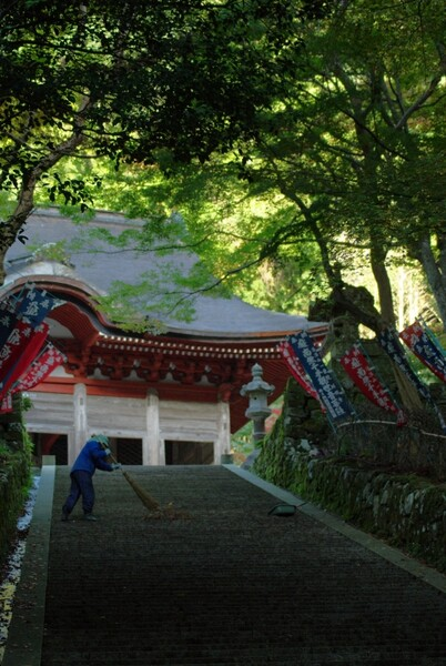 鰐淵寺の朝