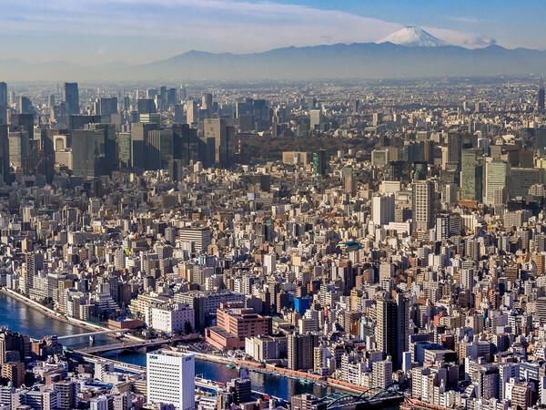 【白】富士山