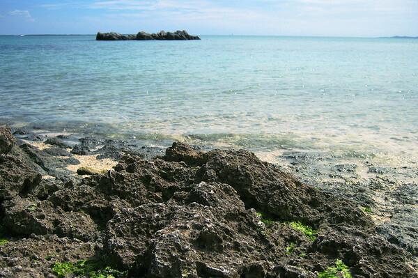 暑くて静かで遠い海