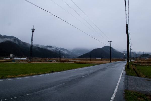 雨降りの朝です。