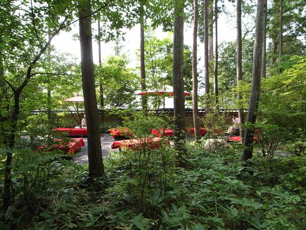 「赤」森の中で一休み