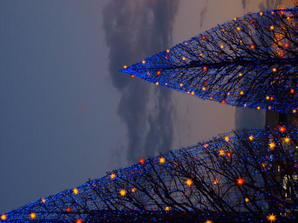 【トキメキの色】夕暮れのイルミネーション