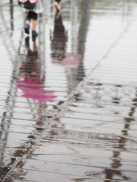雨の「汽車道」